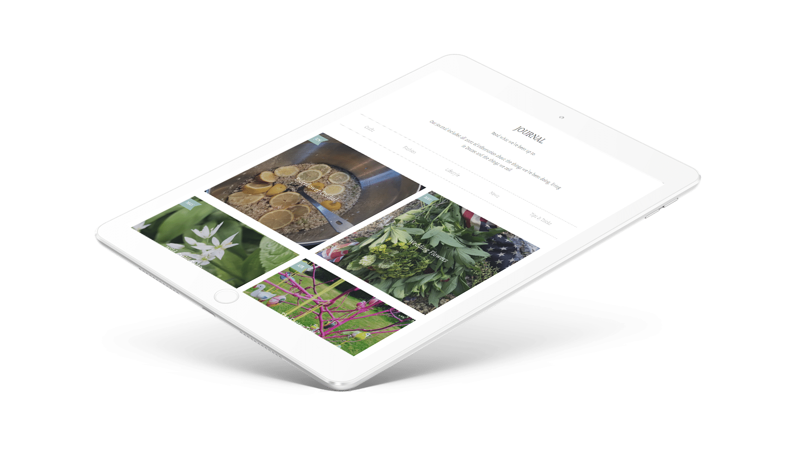 Hambledon Gallery web development